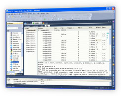 PHP IDE SQL Profiler